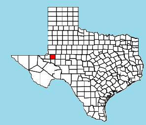 776px-Ector_County_Odessa.svg