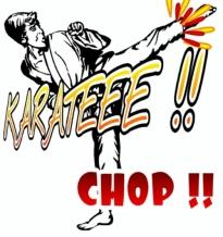wpid-karate-picsay.jpg